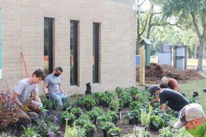CFCC Landscape Gardening Students Planting